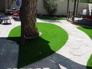 Artificial Grass Photos: Artificial Turf Rubidoux, California Landscape Photos, Backyard Landscape Ideas