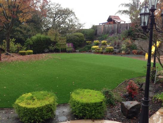 Fake Grass Oildale, California Roof Top, Backyard Design artificial grass