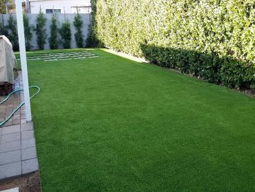 Fake Lawn Lemon Grove, California Backyard Deck Ideas, Beautiful Backyards artificial grass