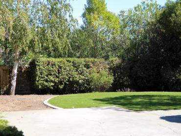 Fake Turf Harbison Canyon, California City Landscape, Backyard artificial grass