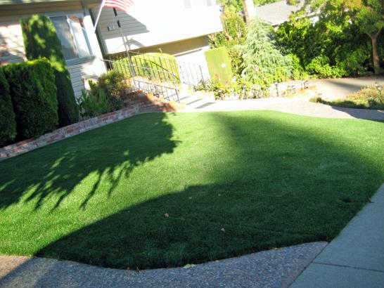 Artificial Grass Photos: Faux Grass Bombay Beach, California Landscape Photos, Small Front Yard Landscaping