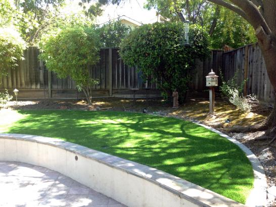 Artificial Grass Photos: Grass Installation Niland, California Roof Top, Commercial Landscape