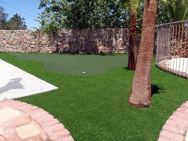 Synthetic Turf Big Bear City, California Lawn And Landscape, Backyards artificial grass