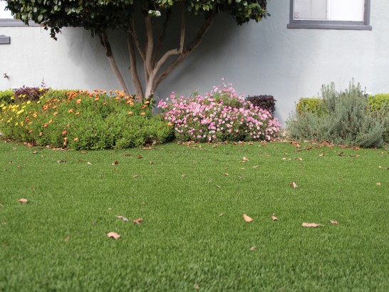 Synthetic Turf Supplier Ladera Heights, California Home And Garden, Front Yard Landscaping artificial grass